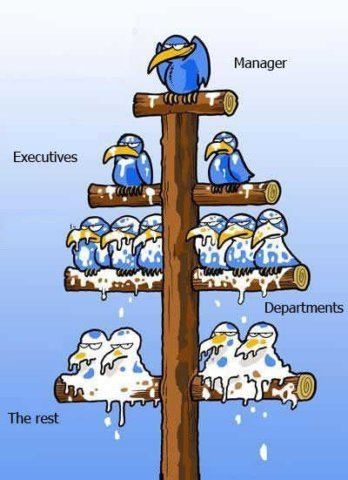Top-down management